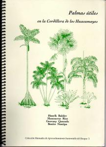 Palmas útiles en la cordillera de los huacamayos